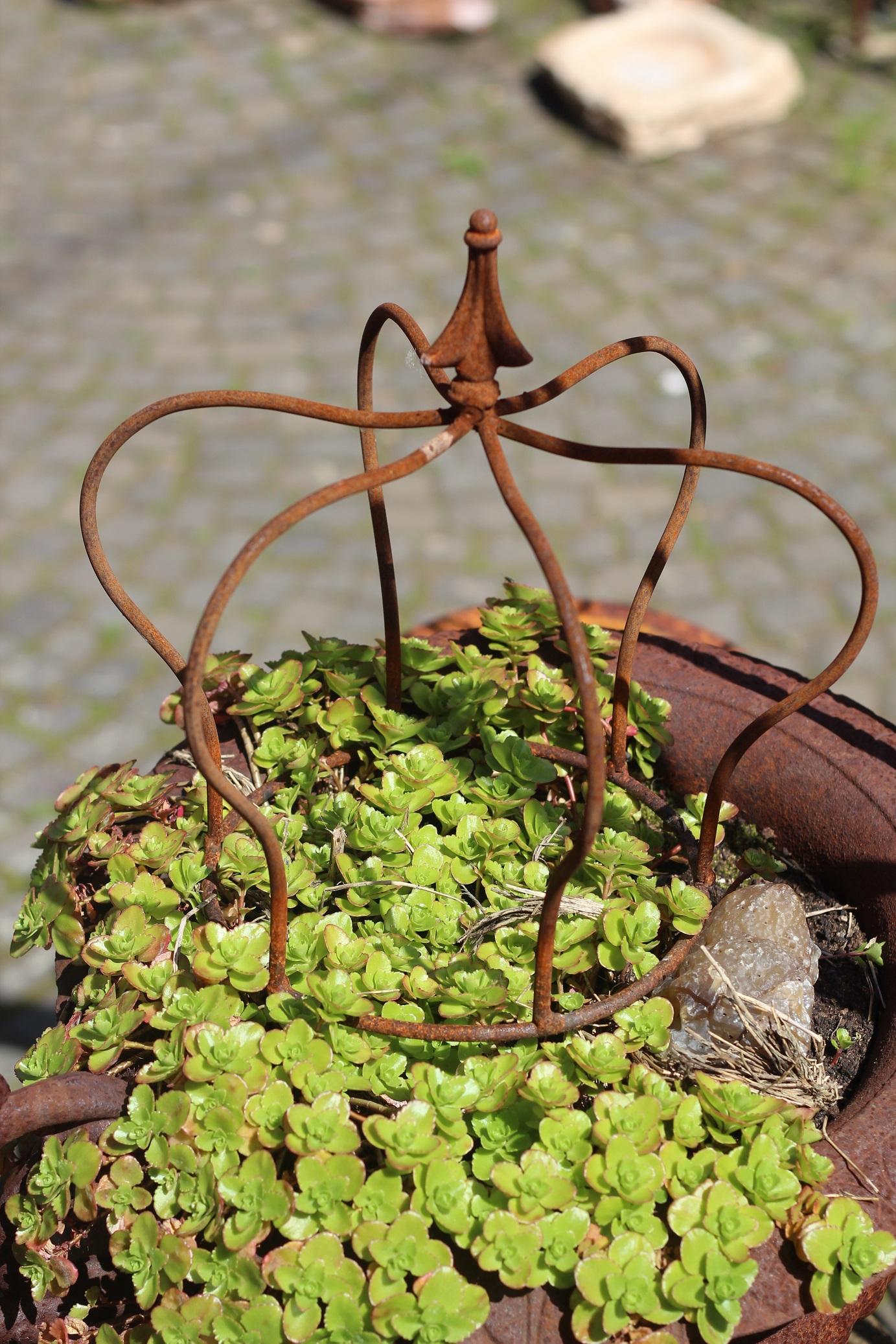 Krone eisen edelrost 30 garten staudenhalter pflanzkrone for Garten edelrost