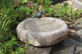 Vogeltränke Granit rund Naturform mit Bronze Vogel Vogelbad für Garten