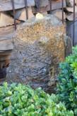 Wasserspiel SET Quellstein Monolith 70cm Muschelkalk Gartenbrunnen inkl. Pumpe