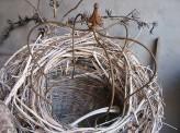 Krone Edelrost 40cm Eisen Dekokrone Pflanzkrone Shabby Cottage & Vintage