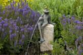 Bronzefigur Froschkönig Gunter wasserspeiend | Wasserspiel aus Bronze für Garten, Teich und Bachlauf
