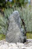 Wasserspiel Exclusiv SET: Bronze Kinder Kalle und Lotta auf Granitfindling inkl. Pumpe | Becken | LED