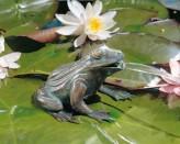 Bronzefigur Frosch 11 | Bronze Teichfigur Wasserspeier von Rottenecker