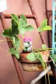 Topfleiter Edelrost | Garten Topfhalter Shabby, Landhaus, Cottage & Vintage